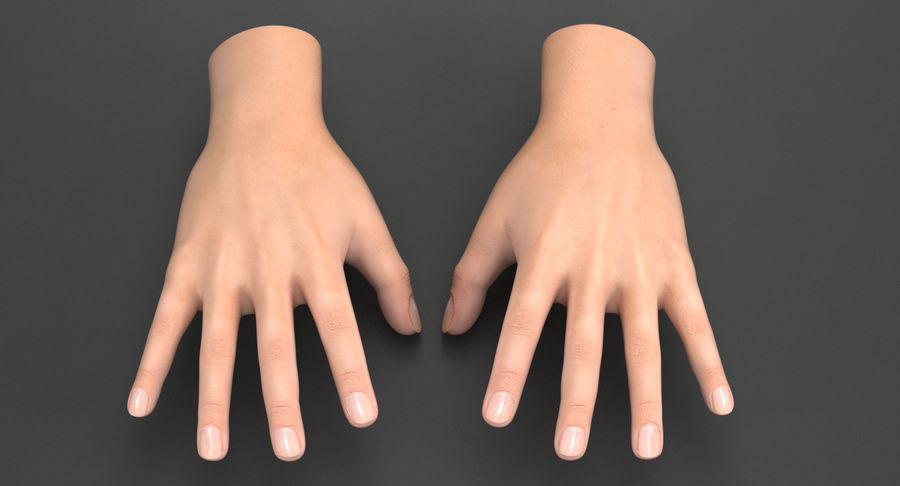 Realistic Hand royalty-free 3d model - Preview no. 2