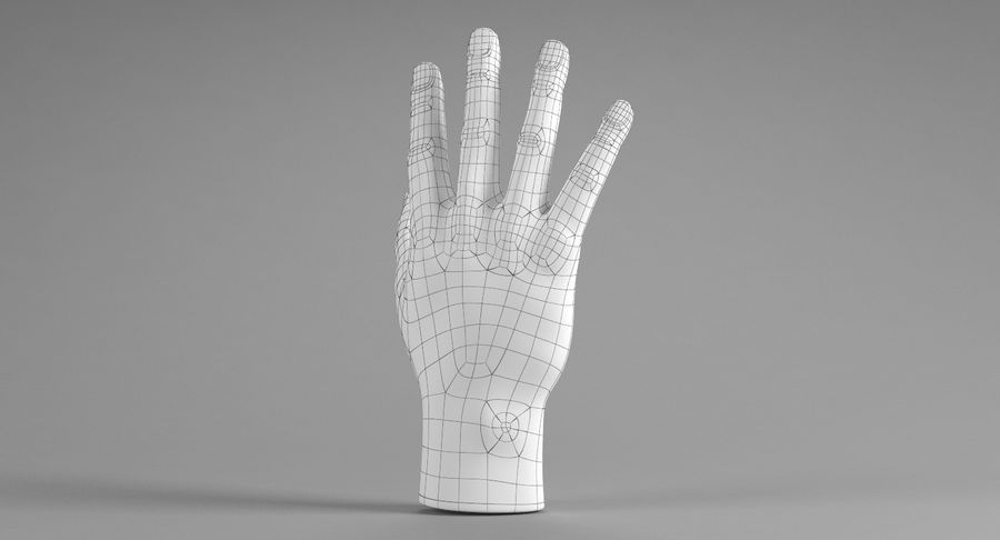 Realistic Hand royalty-free 3d model - Preview no. 10