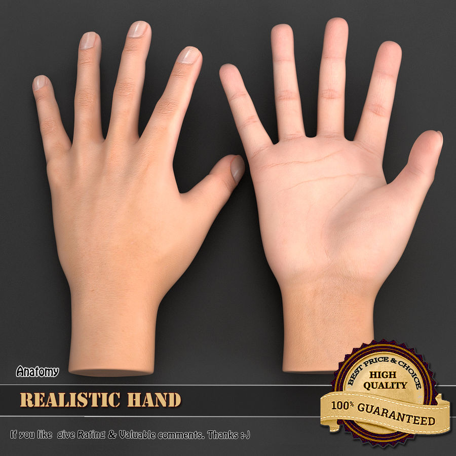 Realistic Hand royalty-free 3d model - Preview no. 1