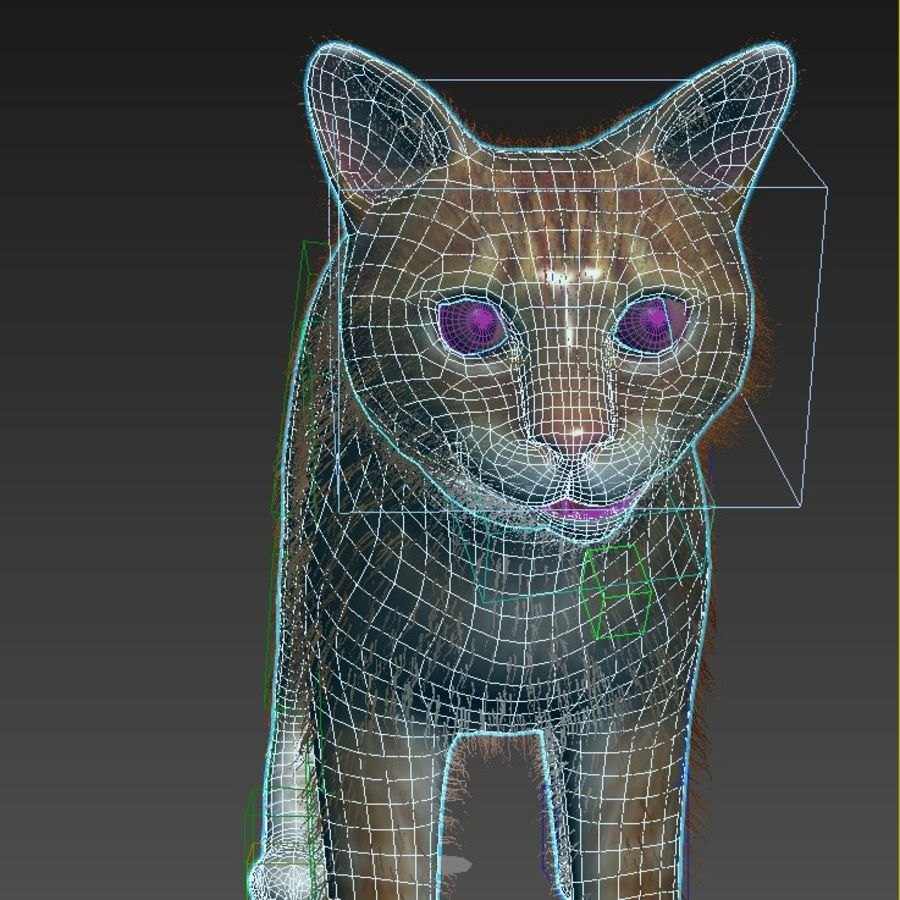 Cat Red Rigged royalty-free 3d model - Preview no. 12