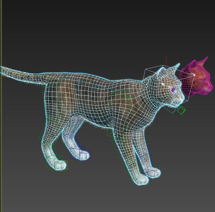 Cat Red Rigged royalty-free 3d model - Preview no. 11