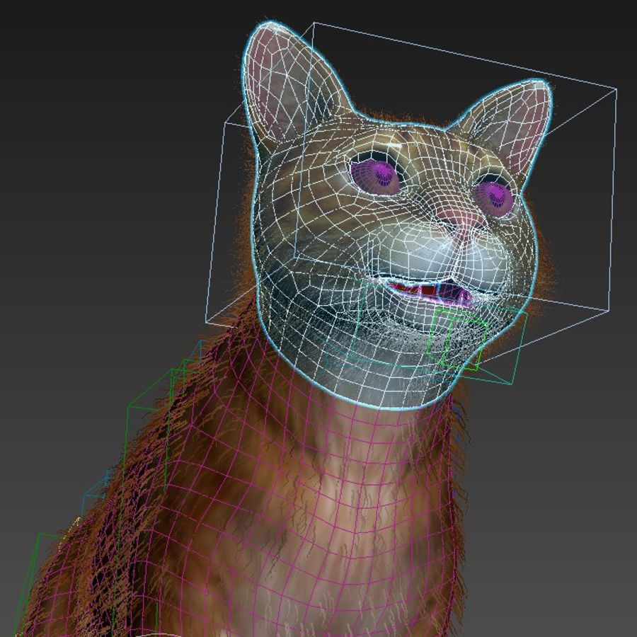Cat Red Rigged royalty-free 3d model - Preview no. 13