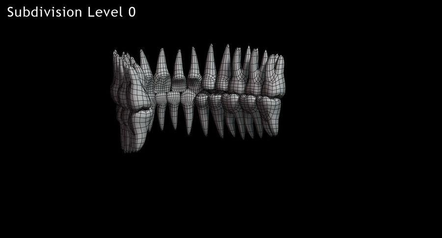 牙齿v2.0 royalty-free 3d model - Preview no. 14