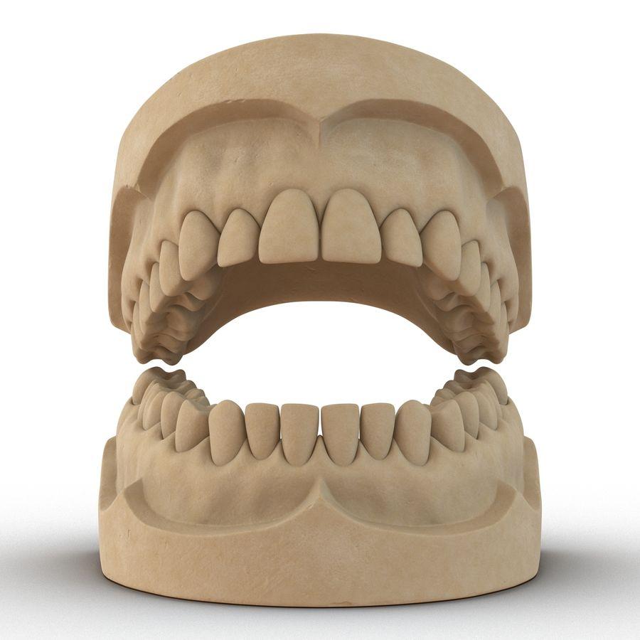 Dental Mold 3D Model $49 -  max  obj  ma  fbx  c4d  3ds - Free3D