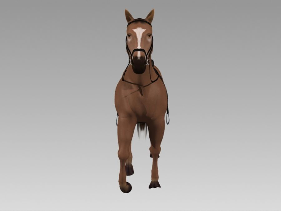 Pferd royalty-free 3d model - Preview no. 6