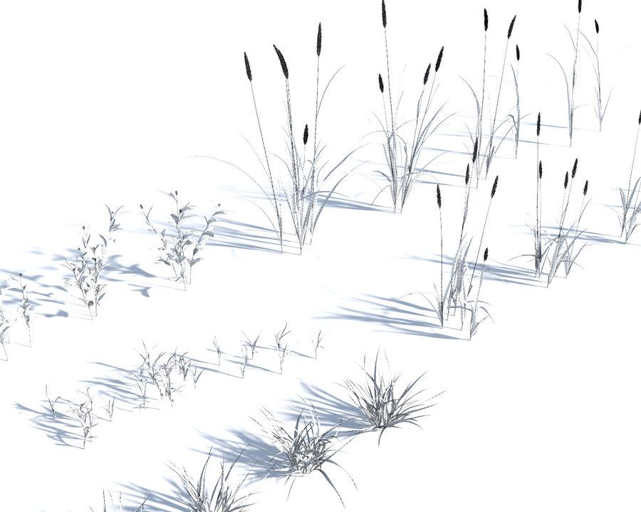 草坪+草包(+ GrowFX) royalty-free 3d model - Preview no. 11