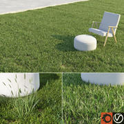 Lawn + Grasses Pack (+ GrowFX) 3d model