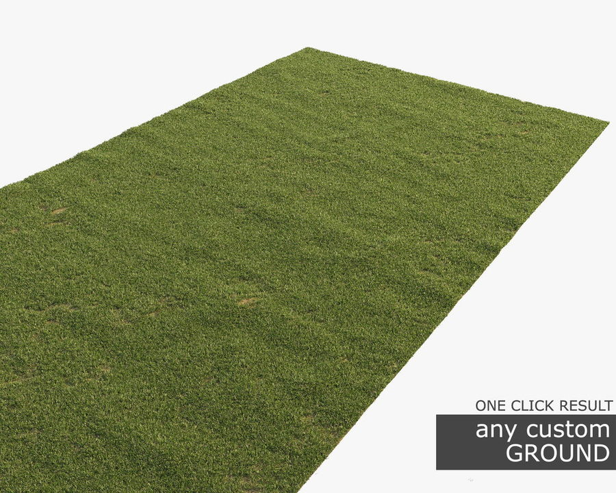 Lawn Grass royalty-free 3d model - Preview no. 8