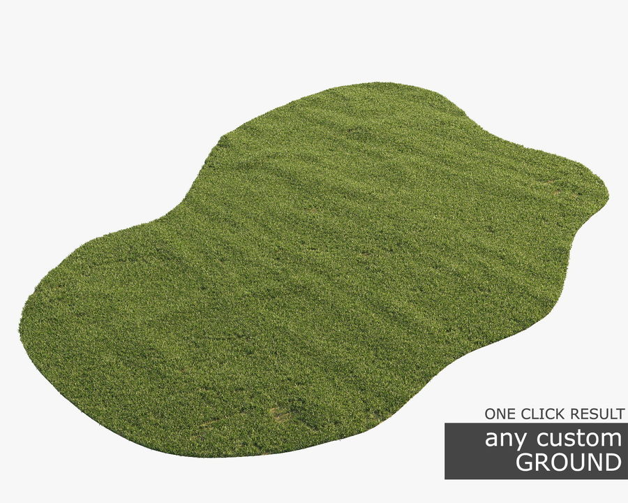 Lawn Grass royalty-free 3d model - Preview no. 10