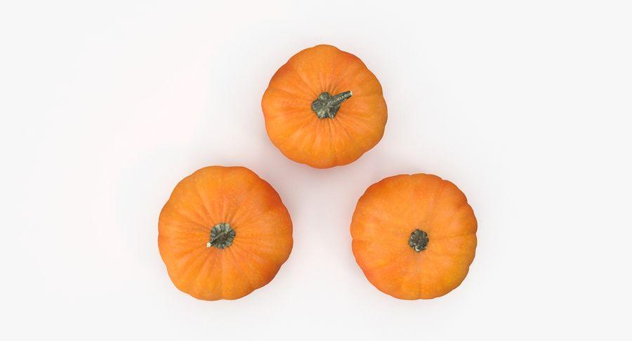 Pumpkins royalty-free 3d model - Preview no. 5