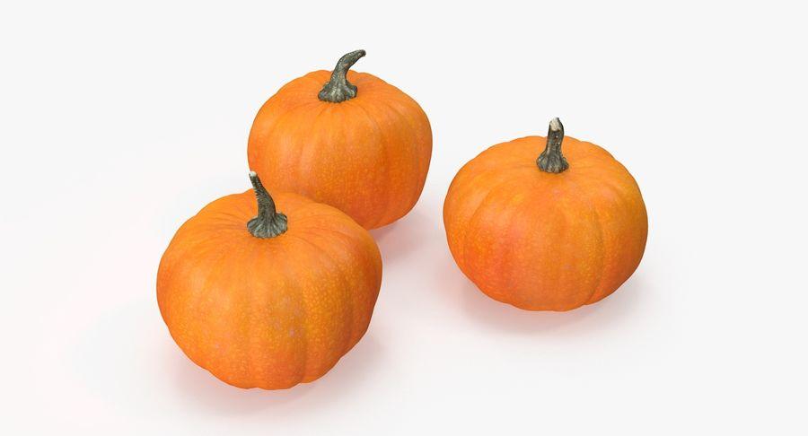 Pumpkins royalty-free 3d model - Preview no. 7