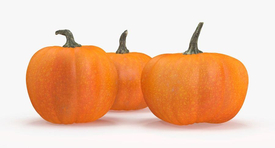 Pumpkins royalty-free 3d model - Preview no. 9