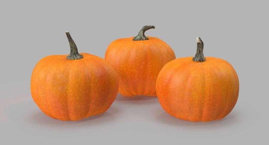 Pumpkins royalty-free 3d model - Preview no. 3