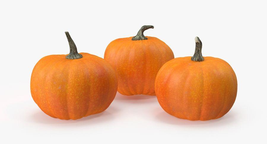Pumpkins royalty-free 3d model - Preview no. 4