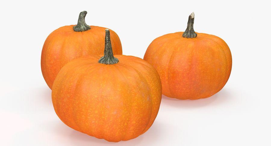 Pumpkins royalty-free 3d model - Preview no. 10
