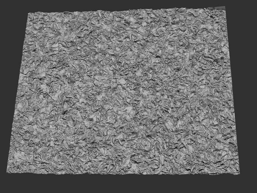 Frozen grass lawn 16K royalty-free 3d model - Preview no. 5