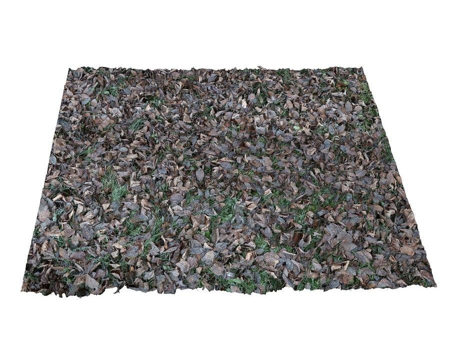 Frozen grass lawn 16K royalty-free 3d model - Preview no. 3