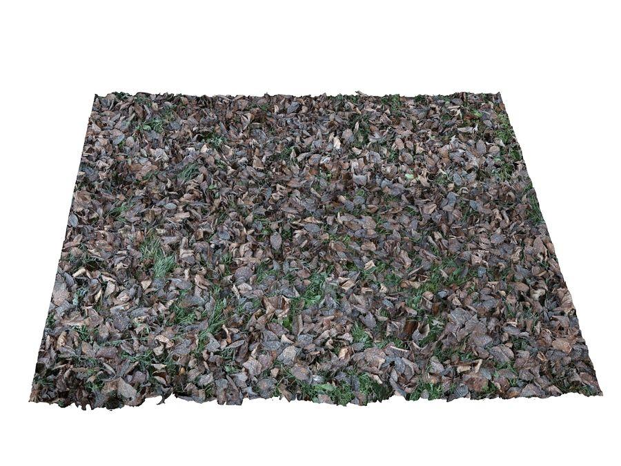 Frozen grass lawn 16K royalty-free 3d model - Preview no. 3
