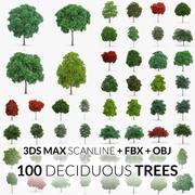Deciduous Trees Collection - 100 Trees - FBX OBJ Scanline 3d model