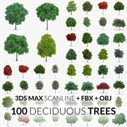 Deciduous Trees Collection - 100 Trees - FBX OBJ Scanline 3d model