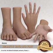 Main et pied réalistes 3d model