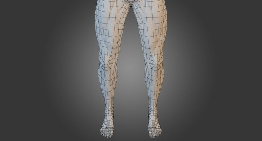 Anatomi Manlig Muskel Kropp (Rigged) royalty-free 3d model - Preview no. 12