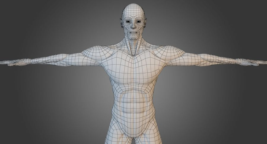 Anatomi Manlig Muskel Kropp (Rigged) royalty-free 3d model - Preview no. 11