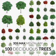 Deciduous Trees Collection - 100 Trees - Mental Ray 3d model