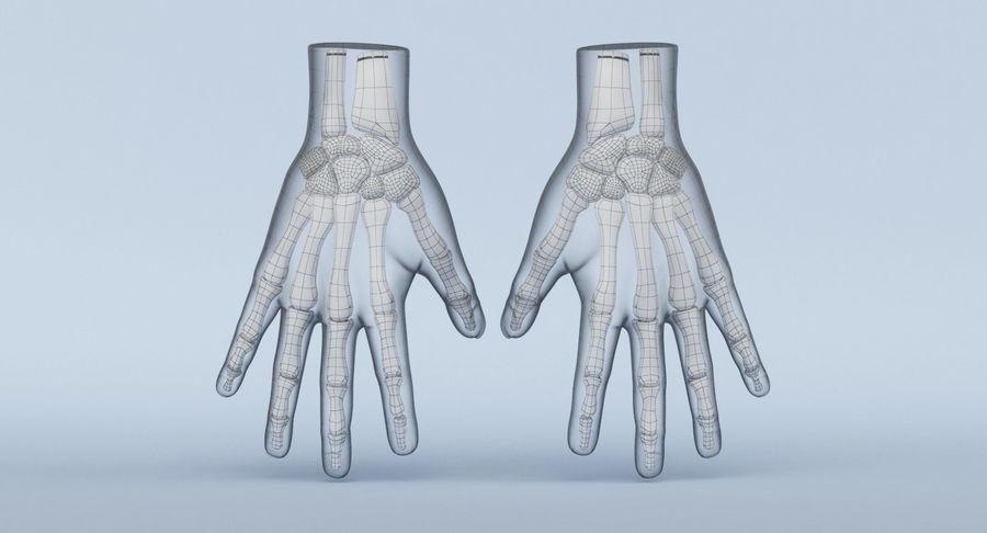 Anatomie de la main bleue royalty-free 3d model - Preview no. 14