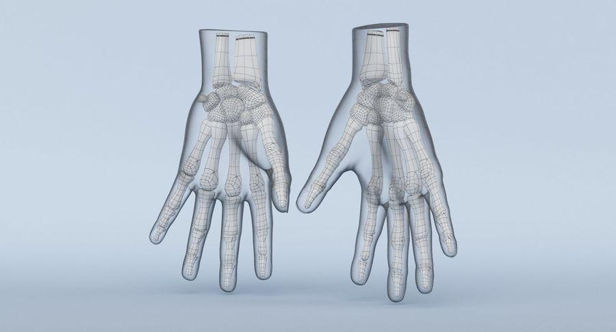 Anatomie de la main bleue royalty-free 3d model - Preview no. 19