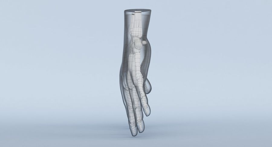 Anatomie de la main bleue royalty-free 3d model - Preview no. 23