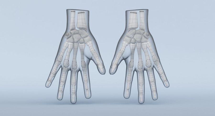 Anatomie de la main bleue royalty-free 3d model - Preview no. 20
