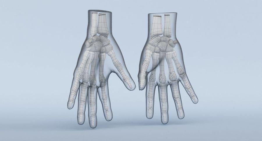 Anatomie de la main bleue royalty-free 3d model - Preview no. 21