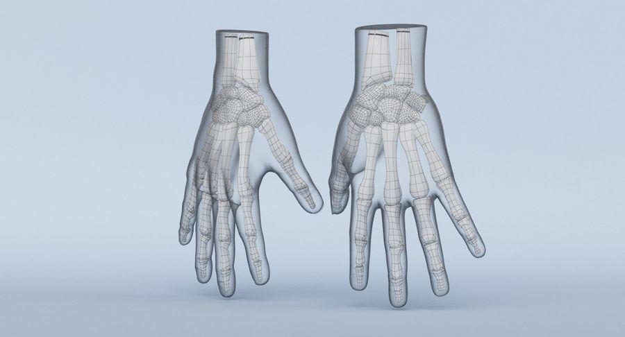 Anatomie de la main bleue royalty-free 3d model - Preview no. 25