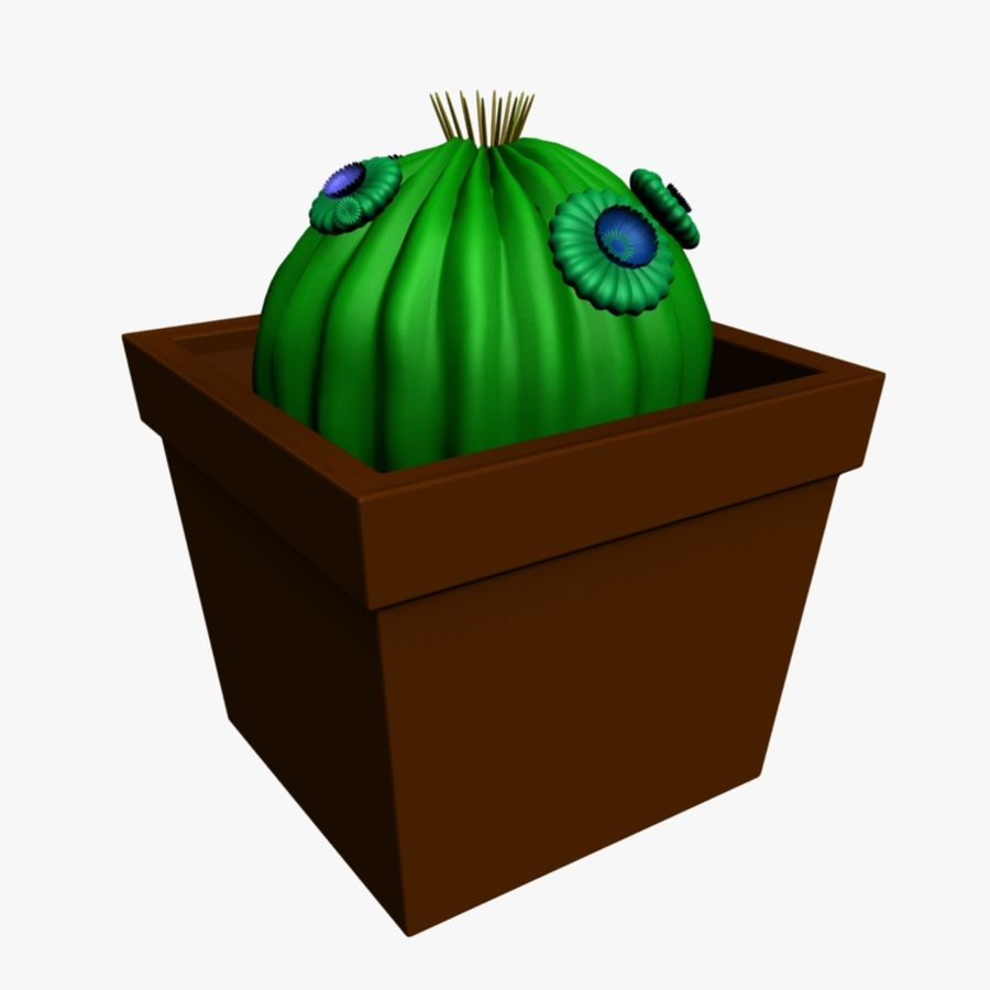 Kaktuspflanze royalty-free 3d model - Preview no. 1