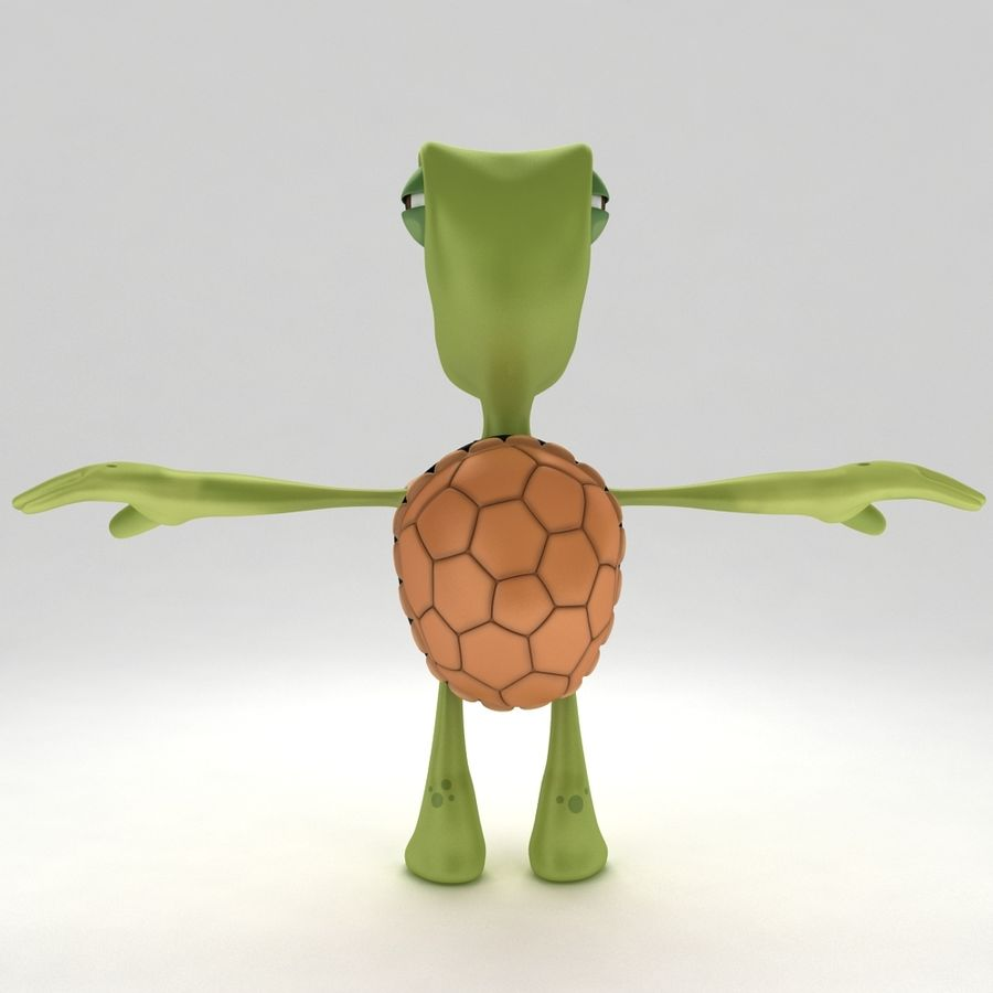 Young Turtle Tortoise model royalty-free 3d model - Preview no. 5