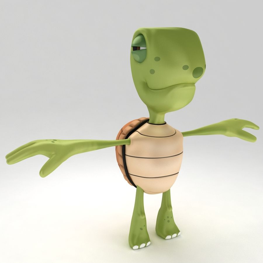 Young Turtle Tortoise model royalty-free 3d model - Preview no. 1
