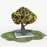 Cartoon Tree 3d model