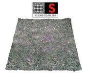 Fryst gräsmatta 16K 3d model
