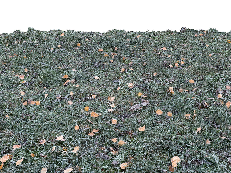 Prato di erba congelata 16K (2) royalty-free 3d model - Preview no. 4