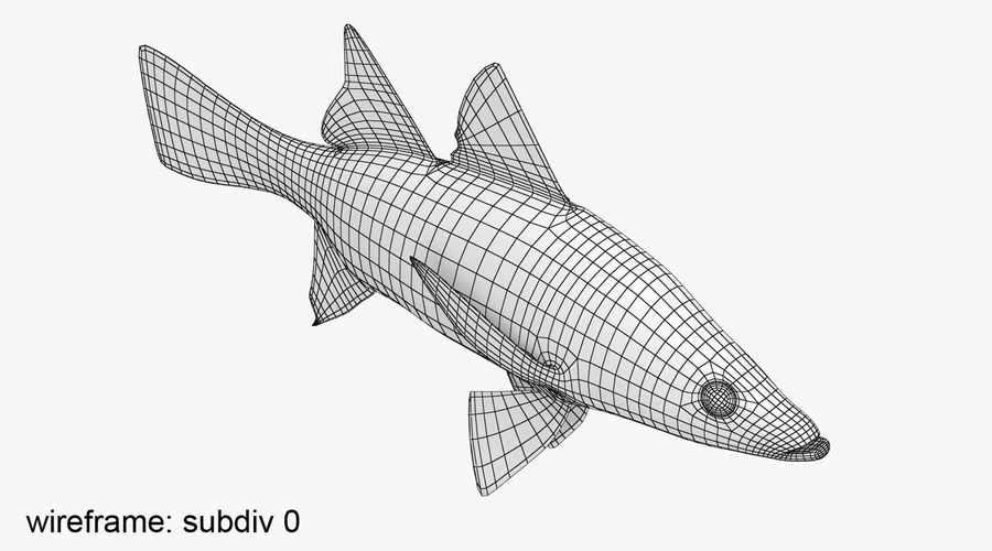 Yellowfin Snook royalty-free 3d model - Preview no. 10