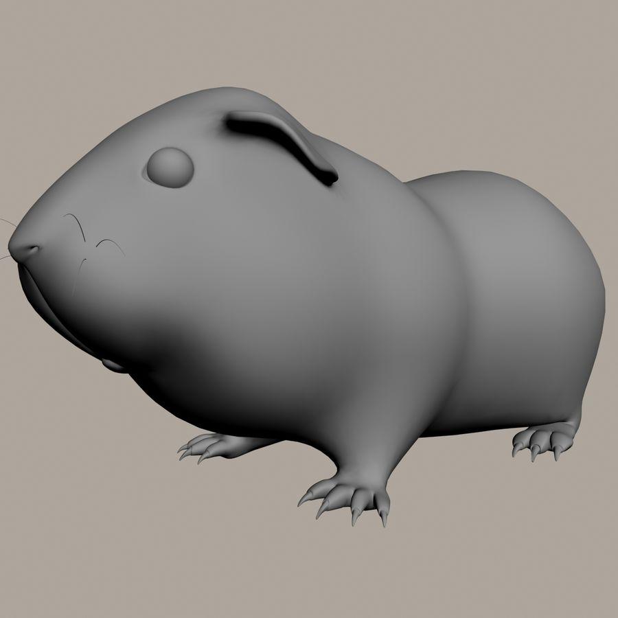 Świnka morska (Cavia porcellus) Rigged royalty-free 3d model - Preview no. 14