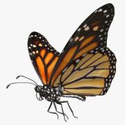 """Danaus Plexippus """"Monarch Butterfly"""" 3d model"""