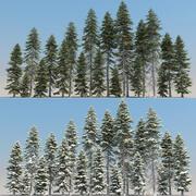 20 + 20 Picea Abies 나무 3d model