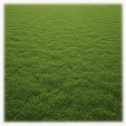 Grass Clump 3d model