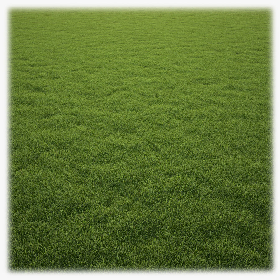 Grass Clump royalty-free 3d model - Preview no. 1