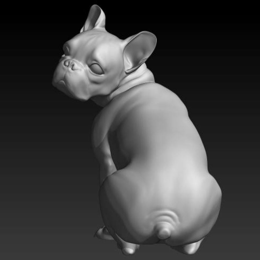 Französische Bulldogge1 royalty-free 3d model - Preview no. 1