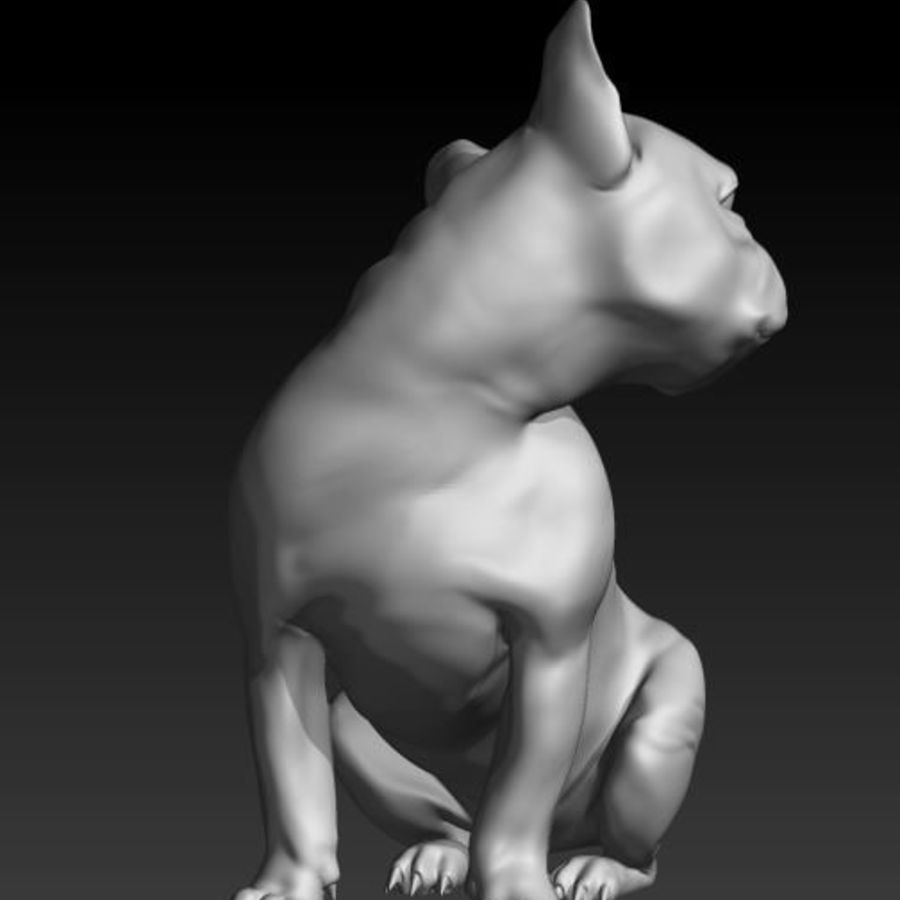 Französische Bulldogge1 royalty-free 3d model - Preview no. 3