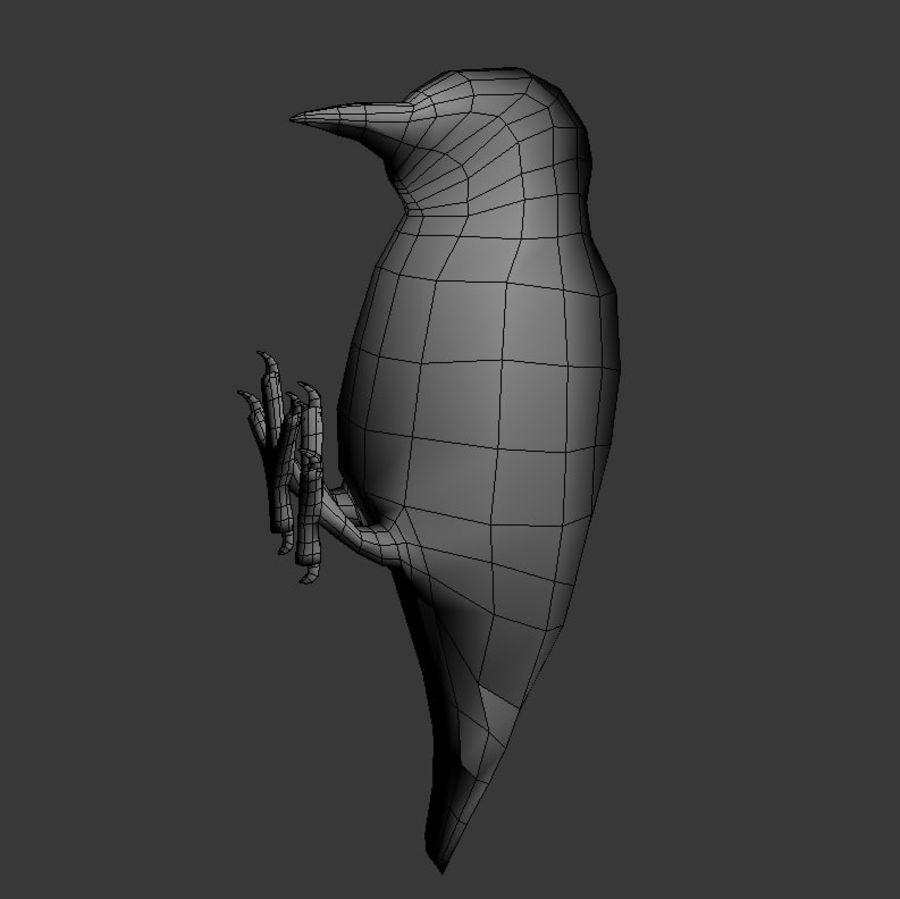 啄木鸟 royalty-free 3d model - Preview no. 5