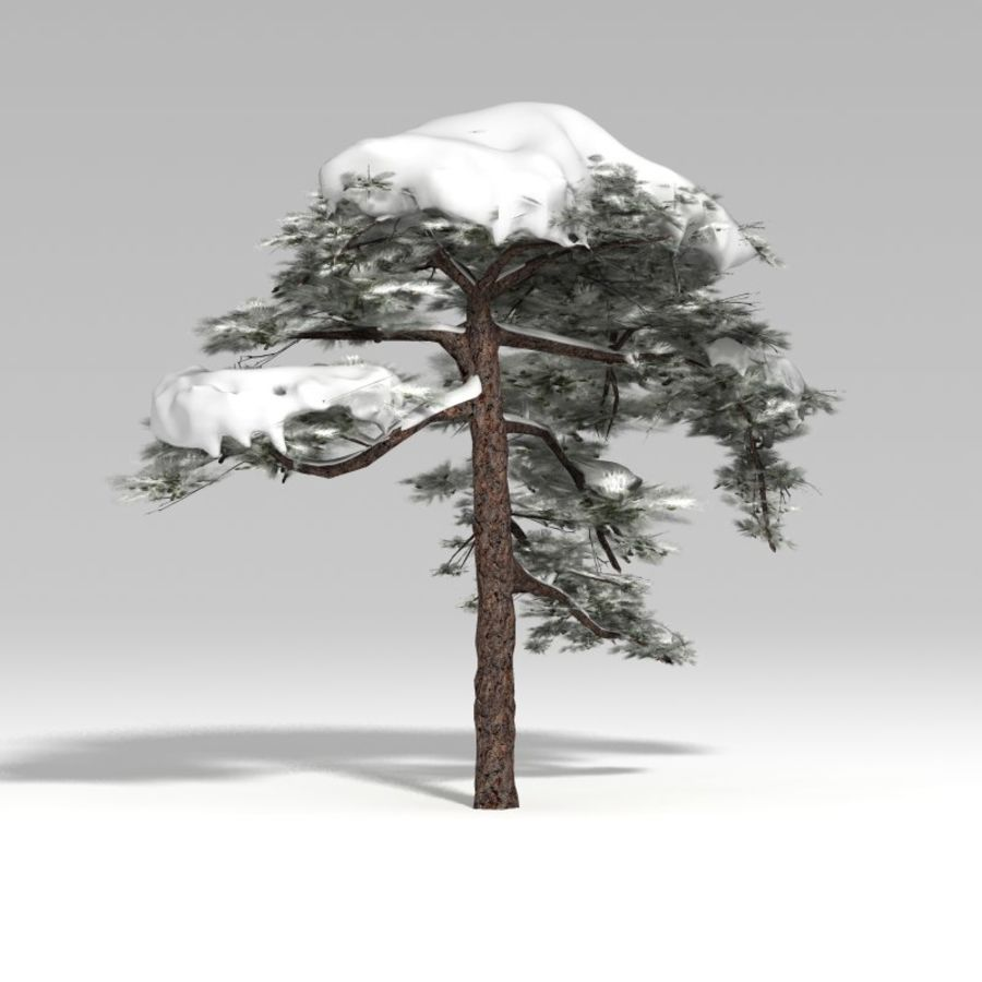 Snowtree V1 royalty-free 3d model - Preview no. 6